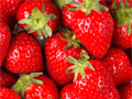 Health Benefits of the Strawberry